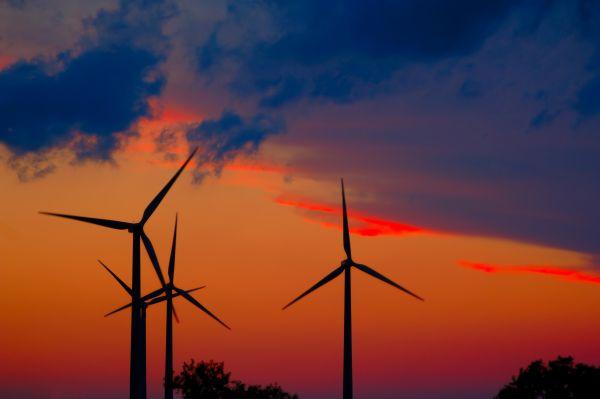 Wind_farm_sunset